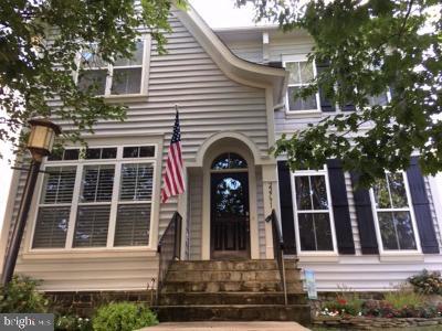 Brambleton Single Family Home For Sale: 22791 Vickery Park Drive
