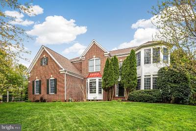 Aldie Single Family Home For Sale: 24048 Windy Hollow Court
