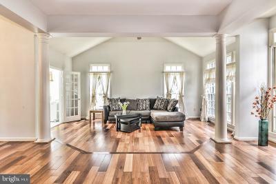 Ashburn Single Family Home For Sale: 20214 Birdsnest Place