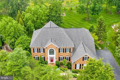 Ashburn Single Family Home For Sale: 21984 Crested Quail Drive