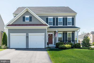 Chantilly Single Family Home For Sale: 25209 Waldo Circle