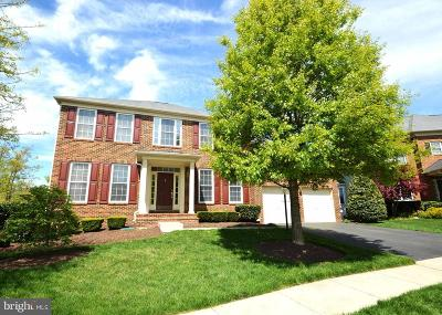 Aldie Single Family Home For Sale: 42084 Porch Light Drive