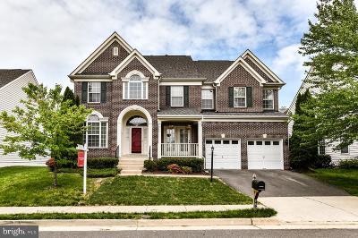 Leesburg Single Family Home For Sale: 742 Vermillion Drive NE