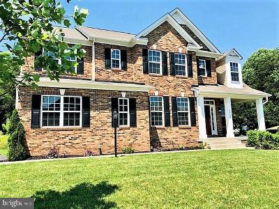 Aldie Single Family Home For Sale: 40560 Aldie Springs Drive
