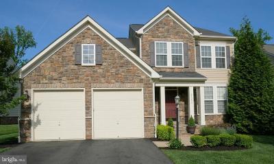 Ashburn Single Family Home For Sale: 23290 Virginia Rae Court