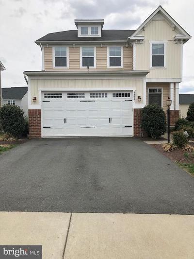 Aldie Single Family Home For Sale: 42007 Powells Farm Way