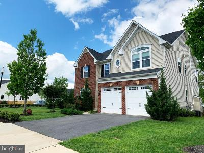 Aldie Single Family Home For Sale: 25808 Success Drive