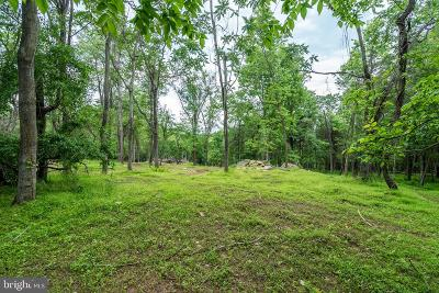 Lovettsville Residential Lots & Land For Sale: Featherbed Lane