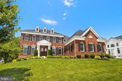 Chantilly Single Family Home For Sale: 42387 Fawn Meadow Place