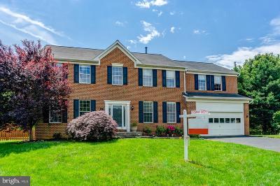 Leesburg Single Family Home For Sale: 607 Michael Patrick Court SE