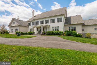 Loudoun County Single Family Home For Sale: 22443 Creighton Farms Drive