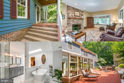 Leesburg Single Family Home For Sale: 40935 Belforest Court