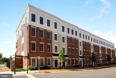 Leesburg Condo For Sale: 287 High Rail Terrace SE
