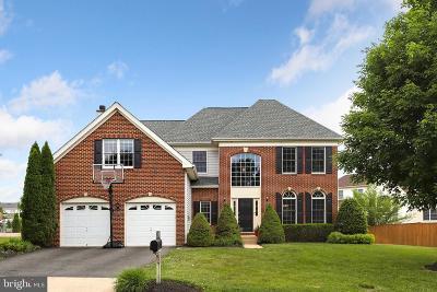 Ashburn Single Family Home For Sale: 22710 Oatlands Grove Place