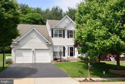 Purcellville Single Family Home For Sale: 437 E Loudoun Valley Drive