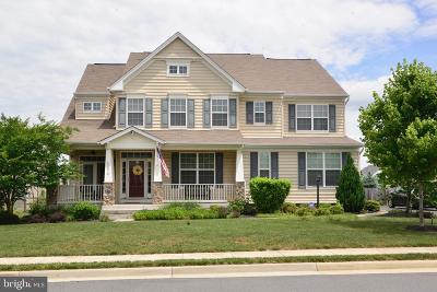 Leesburg Single Family Home For Sale: 43070 Peters Court