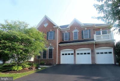 Aldie Single Family Home For Sale: 41885 Feldspar Place N