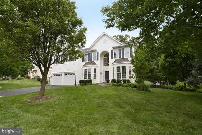 Ashburn Single Family Home For Sale: 42944 Deer Chase Place