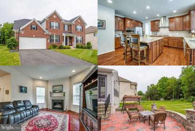 Ashburn Single Family Home For Sale: 42146 Cameron Parish Drive
