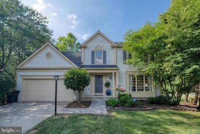 Leesburg Single Family Home For Sale: 708 Amber Court NE