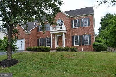 Ashburn Single Family Home For Sale: 43801 Timberbrooke Place
