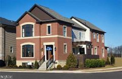 Ashburn Single Family Home For Sale: 44596 Stepney Drive