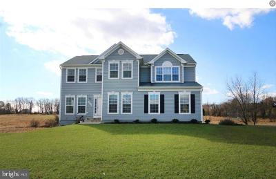 Leesburg Single Family Home For Sale: 42212 Lamz Place