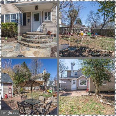 Leesburg Single Family Home For Sale: 250 Loudoun Street SW