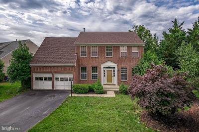Sterling Single Family Home For Sale: 46921 Seneca Ridge Drive