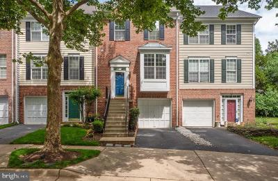 Chantilly Townhouse For Sale: 25434 Indian Hill Circle