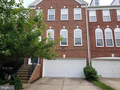 Ashburn Rental For Rent: 22707 Simonet Blanc Terrace