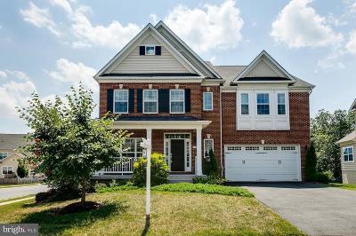 Ashburn Single Family Home For Sale: 42527 Rosalind Street