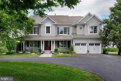 Lovettsville Single Family Home For Sale: 39594 Quarter Branch Road