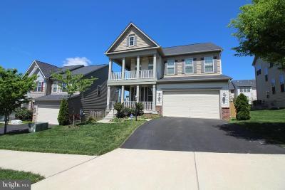 Ashburn Single Family Home For Sale: 42783 Macauley Place