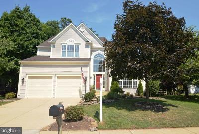Ashburn Single Family Home For Sale: 21345 Clappertown Drive