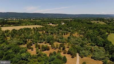 Lovettsville Residential Lots & Land For Sale: Lutheran Church Road