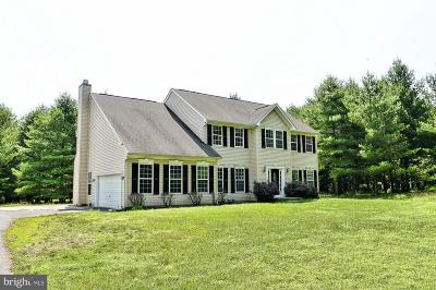 Lovettsville Single Family Home For Sale: 11558 Dutchmans Creek Road