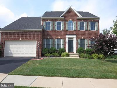 Ashburn Single Family Home For Sale: 44361 Stone Roses Circle