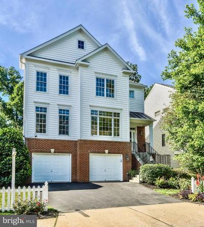 Ashburn Single Family Home For Sale: 43763 Carrleigh Court