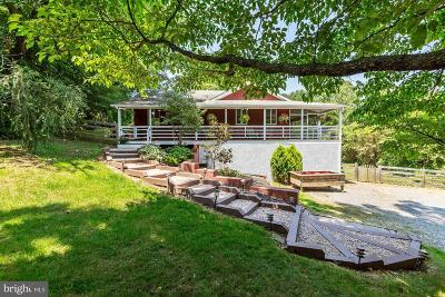 Leesburg Single Family Home For Sale: 17787 Dry Mill Road