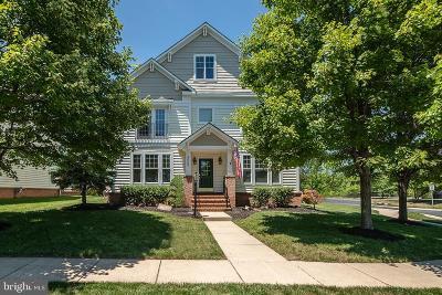 Brambleton Single Family Home For Sale: 23068 Pecos Lane