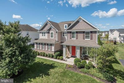 Ashburn Single Family Home For Sale: 21925 Silverdale Drive