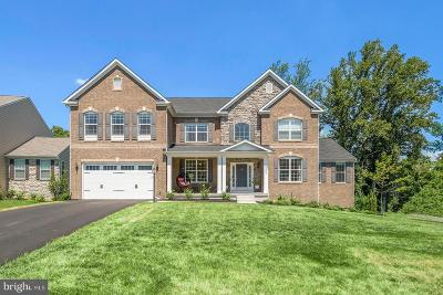 Aldie Single Family Home For Sale: 23955 Mill Wheel Place