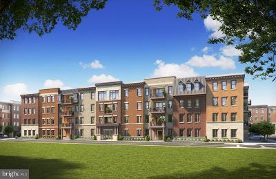 Brambleton Condo For Sale: 23631 Havelock Walk Terrace #D