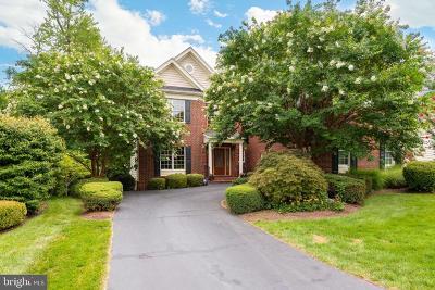 Ashburn Single Family Home For Sale: 20132 Bandon Dunes Court