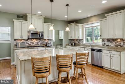 Leesburg Single Family Home For Sale: 15639 Limestone Branch Place