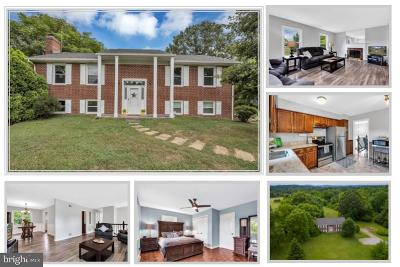 Lovettsville Single Family Home For Sale: 13198 Berlin Turnpike