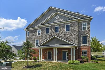Ashburn Condo For Sale: 42552 Wildly Terrace