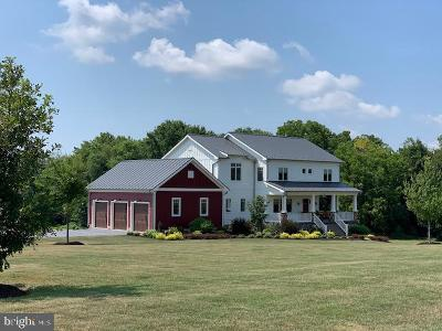 Waterford Single Family Home For Sale: 38577 John Wolford Road