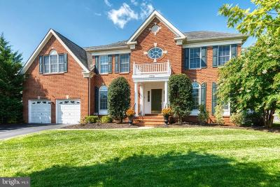 Ashburn Single Family Home For Sale: 19655 Olympic Club Court